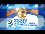Хоккей с мячом / Чемпионат мира 2014 / Группа А / 3-й тур / Россия - Швеция