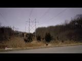 Невероятная меланхолия / The Melancholy Fantastic (2011)